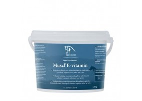 Blue hors MusclE-Vitamin-20
